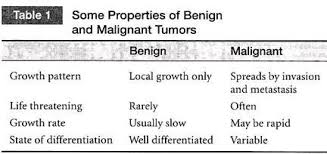 essay on cancer a deadly disease types diseases biology some properties of benign and gnant tumors