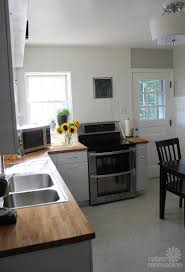 Revive Kitchen Cabinets Vintage Geneva Kitchen Cabinets Made Retro Fresh Again In This Remodel