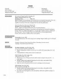 Letter Of Recommendation Best Of Sample Recommendation Letter For