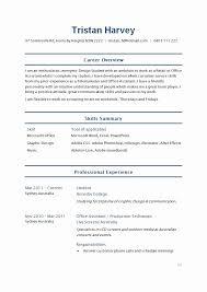Computer Skills On Resume Beautiful Skills For Social Work Resume
