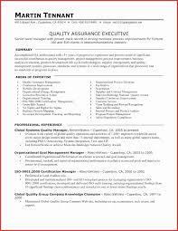 Manual Testing Resume Sample Best Of Qa Tester Resume Sample One Etl