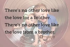 Brotherly Love Quotes Adorable 48 Best Brother Quotes SayingImages