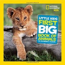 national geographic little kids first big book of s national geographic little kids first big books