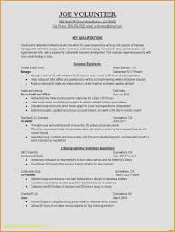 Sample High School Student Resume For Summer Internship Cool Photos