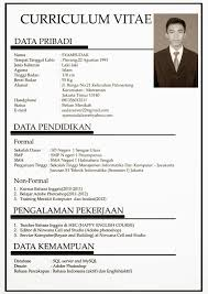 contoh job application letter and curriculum vitae professional contoh job application letter and curriculum vitae information technology cv example the balance letter resignation letter