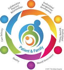 Professionalism In Nursing Professional Practice Model For Nursing Valley Health System
