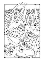 Kleurplaat Fantasie Dieren Afb 25637