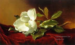 3 a magnolia on red velvet atc romantic flower martin johnson heade