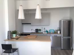 ikea appliances review. Fine Review Ikea Kitchen Cabinets Reviews New Cabinet 2018  Appliances Tips And Review To C
