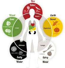 Chinese Medicine Five Elements Chart Feng Shui Five Element Chart Feng Shui Colors Improve Your
