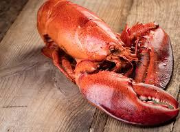 Grilled, Baked & Steamed Lobster Recipes