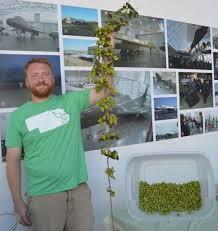 Dustin Rutledge, owner, Homestead Hops | | journalstar.com