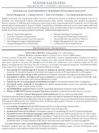 Resume Examples Executive Executive Resume Sample Resume And