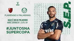 Palmeiras x Flamengo: números, estatísticas e curiosidades da partida –  Palmeiras