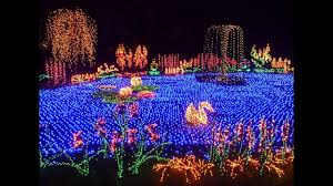 Bellevue Botanical Garden Holiday Lights Botanical Gardens Light Show 2019 2020 New Car Reviews