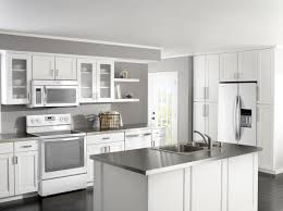 kitchen cabinet ideas with white appliances photo 3