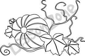 pumpkin vine drawing. pumpkin vine b\u0026w drawing n