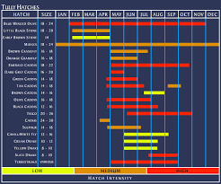 Pa Fly Fishing Hatch Chart Image Of Fishing