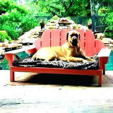 Outside Dog Beds Outdoor Dog Bed With Canopy Extra Large Outdoor Dog ...