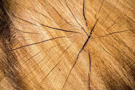 best wood for making furniture. DIY Ideas Wood Textures Best For Making Furniture M