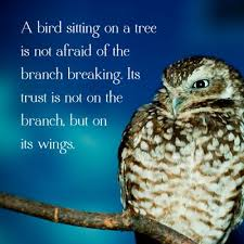 Owl Paintings With Quotes. QuotesGram