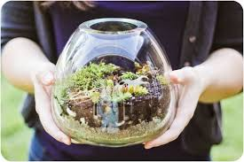 how to make your own terrarium. Plain How Build Your Own Terrarium Throughout How To Make O