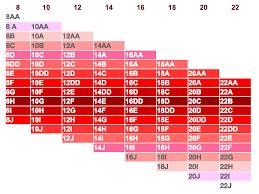 French Bra Sister Size In 2019 Bra Size Charts Bra Chart