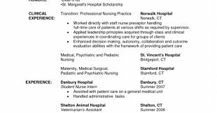 New Grad Rn Resume Template. Experienced Rn Resume Sample Healthcare ...