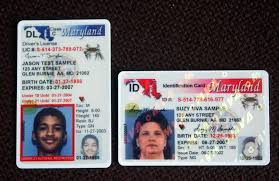 Driver's Id Cards License 1 Maryland New follownews Rolling Out Image