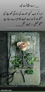 AH Notebook Inspiring Urdu Shayari Quote Images Quotes Of Delectable Idealist Quotes In Urdu