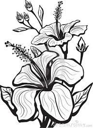 Small Picture Flower Drawing Clipart 66e43a8d22e5377cf986cfa4fb1c5fa9gif