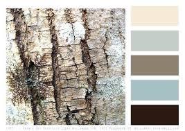 office color palette. Office Color Palette Interior Design Palettes Beauteous Ideas About Schemes On Home