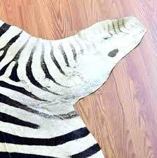 zebra skin rug zebra skin rug rugs for at compressed design zebra skin rug zebra