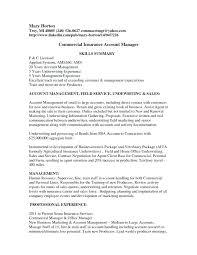 Commercial Manager Resume Viragoemotion Com