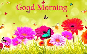 hd good morning images nature wallpaper find wallpapers for free
