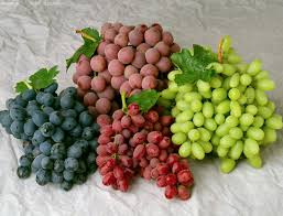 تتخيل ماهي فوائد بذور العنب