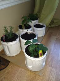 Herbs garden  Reuse Folgers coffee containers as planters for your mini  veggies, spices and flowers. Spray