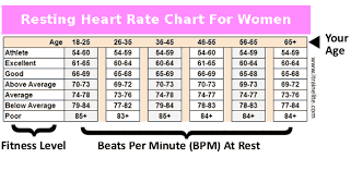 Average Pulse Rate For Women Heart Rate Zones