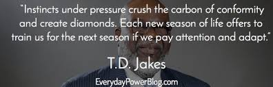40 TD Jakes Quotes About Destiny And Success Everyday Power Gorgeous Td Jakes Quotes On Life