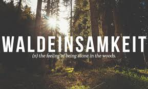 Most Beautiful German Quotes Best of 24 Beautiful Words The English Language Should Steal
