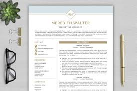 Professional Resume Templates 2013 Resume Template Cv Templates Professional Resume Template