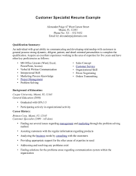 resume professional summary sample unique project management resume professional summary sample doc career summary resume examples professional career summary resume examples professional