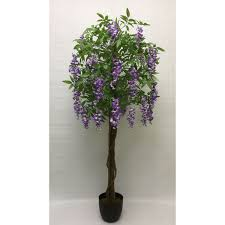 Wisteria codes | updated list. Lavender Wisteria Tree Home Accents Afw Com