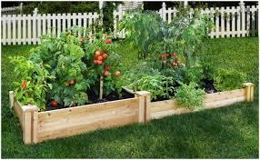 Small Picture Backyards Splendid Garden Luxury Backyard Landscape Design 5