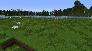 tall grass texture. Image Tall Grass Texture