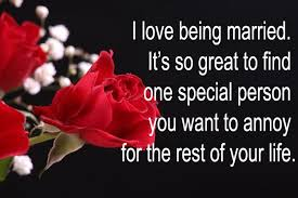 Funny Valentine Quotes Classy Funny Valentine's Day Quotes That Will Make You Chuckle