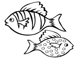 Small Picture Realistic Aquarium Fish Coloring Page Free Printable Coloring