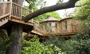 Worldu0027s Most Incredible Treehouse Hotels PHOTOS  The Weather Treehouse Hotel Hampshire