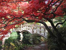 Small Picture japanese garden bridges 4 20ft 16 foot japanese garden bridges