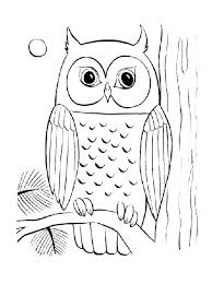 Snowy Owl Color Owl Cartoon Coloring Pages Coloring Pages Of Owls
